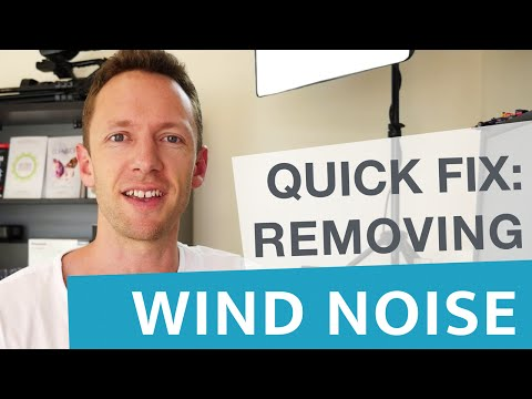 Remove Wind Noise in Videos: Quick Audio Fix