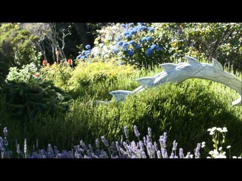 Crystalline Windows into Fairy Gardens