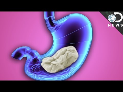 What Really Happens When You Swallow Gum?