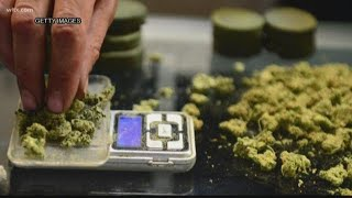 Medical marijuana in South Carolina: what the facts on the drug