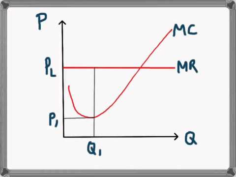 Marginal Cost and Marginal Revenue