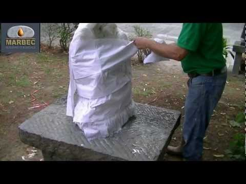 SYSTEM: Removal of algae and lichens on marble statue