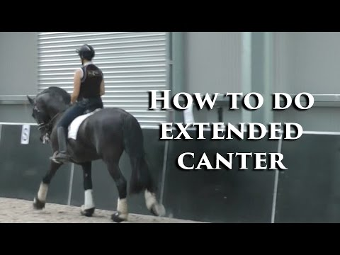 How to do Awesome Extended Canter - Dressage Mastery TV Ep79