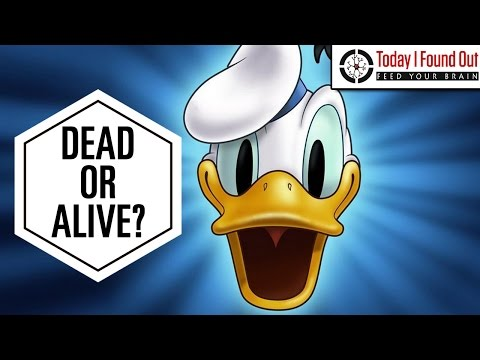 What Happened to Huey, Dewey, and Louie's Parents?