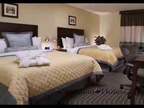 Toronto Hotels | The Yorkland Hotel Toronto