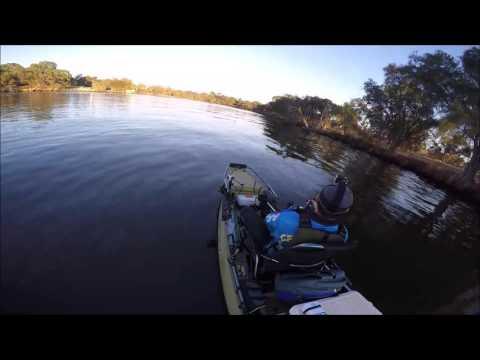 Swan River Breamin