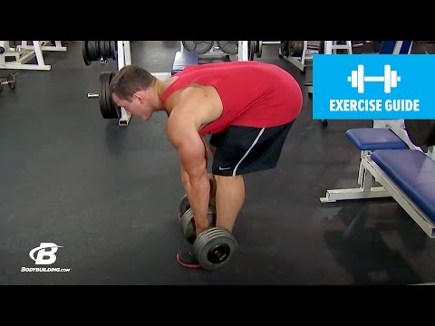 Stiff Legged Dumbbell Deadlift with Hunter Labrada | Exercise Guide