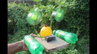 ✓Amazing Science Project! Science Experiments For Kids - science project