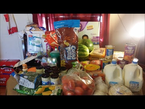 Large Family Walmart Grocery Haul