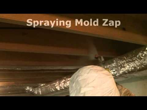 How To Remove Basment Ceiling Mold.wmv