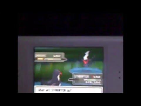 pokemon platinum:: catching darkrai no action replay