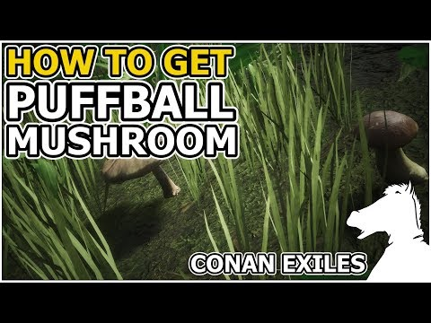 How to get Puffball Mushroom | CONAN EXILES