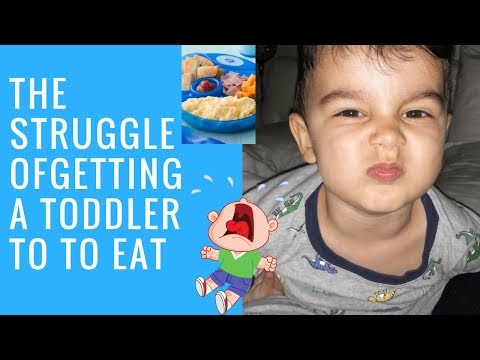 A DAY IN THE LIFE OF A SINGLE MOM | THE STRUGGLE & FRUSTRATION OF FEEDING A TODDLER