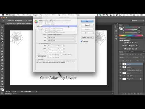 Adobe Photoshop CC for Photographers Tutorial | Standardizing Color Management