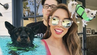 MOVING IN, ORGANIZING & TURBO SWIMMING | LUSTRELUX