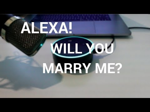 Asking Alexa Some Stupid Questions