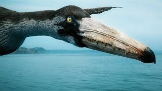 How the Largest Flying Bird of All Time Stayed Airborne