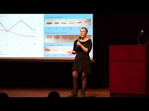 IUP 3MT Presentation: Lauren Wishnie