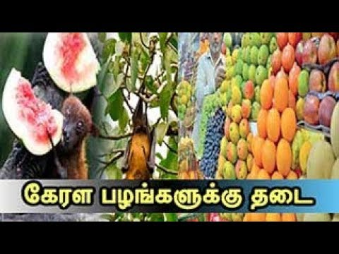 Gulf countries bans fruit import from Kerala