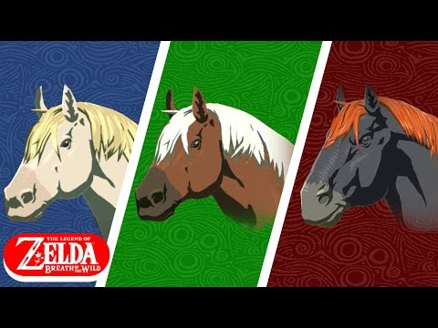 The ULTIMATE Breath of the Wild Horse/Mount Guide!