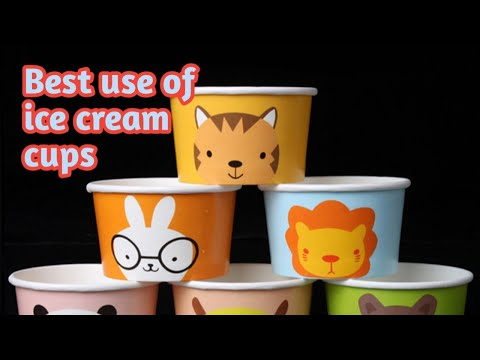 DIY spicy box|How to make spicy box using ice-cream cups | Sonia Dsouza | Hindi vlog 2018