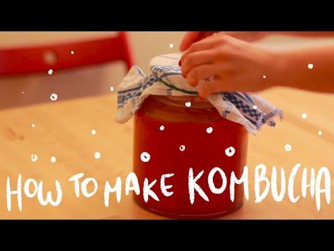 How to make KOMBUCHA - Step by Step