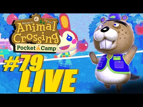 Fishing Tournament is Here! - Animal Crossing: Pocket Camp Live Stream