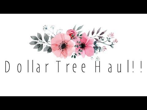 DOLLAR TREE HAUL!!!