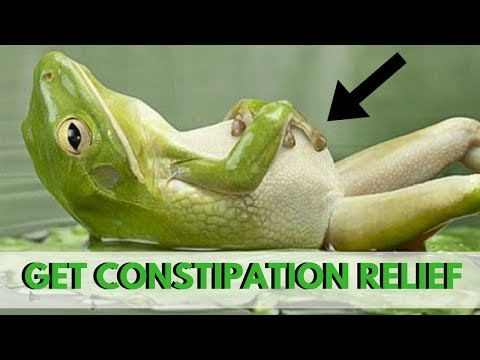 Constipation Relief: Top 6 Natural Laxative Foods to Help You Poop Easier