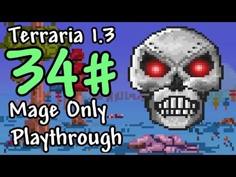 Expert Mode Terraria || Mage Only: Skeletron Prime || Episode 34
