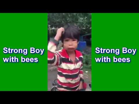 Strong Boy with bees - Funny video