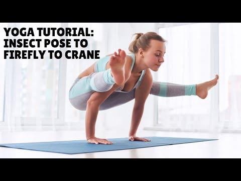 YogaVibes.com - Insect Pose to Firefly to Crane (Arm Balances)