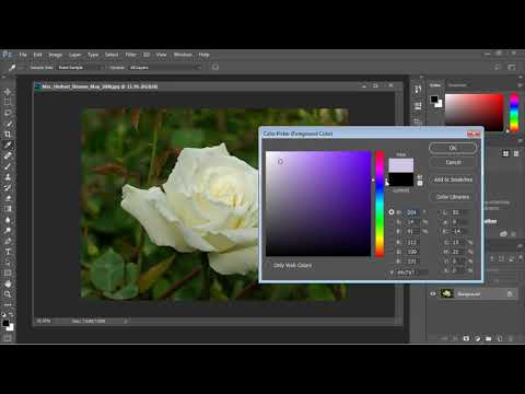 Photoshop Tutorial for Beginners - 13 - Color Replacement Tool