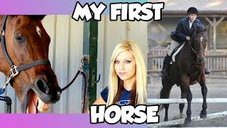 STORY TIME: HOW I GOT MY FIRST HORSE AND HOW LONG IVE BEEN RIDING