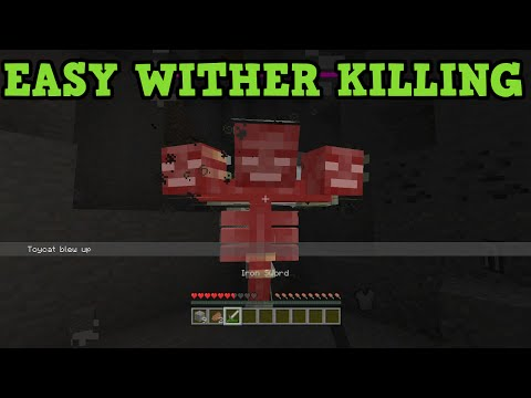 Minecraft Kill Wither With LEAST STUFF Easily