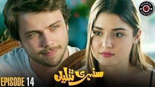 Sunehri Titliyan | Episode 14 | Turkish Drama | Hande Ercel | Dramas Central