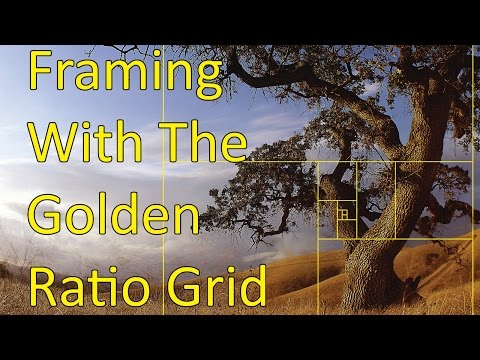 Image Composition: Golden Ratio-inspired Grid