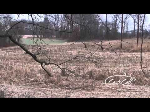 Cast & Call Outdoors Visits Rocky Branch Outfitters
