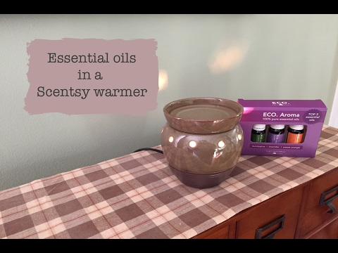 Essential oils in a Scentsy warmer!
