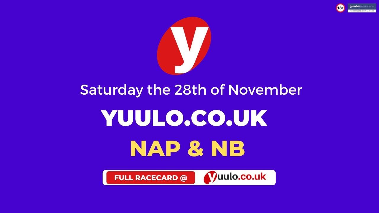 NAP & NB 🏇 - Saturday the 28th of November Free Horse Racing Tips 🏇