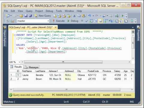 Topic #5 : SQL-Server 2012 - INSERT INTO ( Employee ) Table