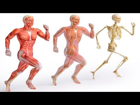 See What Happens To Your Body If You Run 5 minutes Everyday