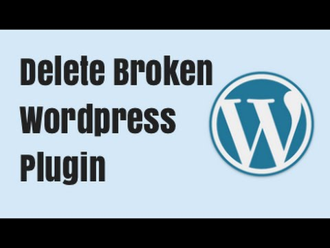 How to Delete a Broken Wordpress Plugin - Backend