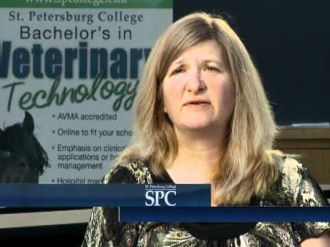 Four-Year Programs: Bachelor of Applied Science in Veterinary Technology