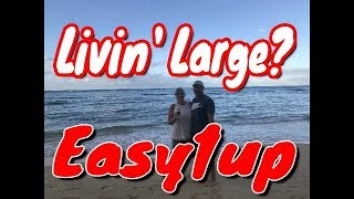 Easy1up / Review & Bonuses