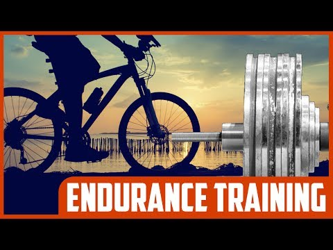 Does Endurance Training Promote Muscle Building From Strength Training?