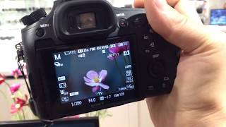 Tested:The Sony RX10 IV blazingly fast superzoom camera