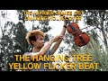 The Hanging Tree And Yellow Flicker Beat Violin Cover