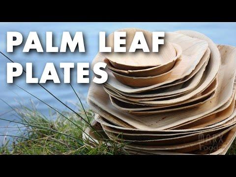 Palm Leaf Plates Product Spotlight Video