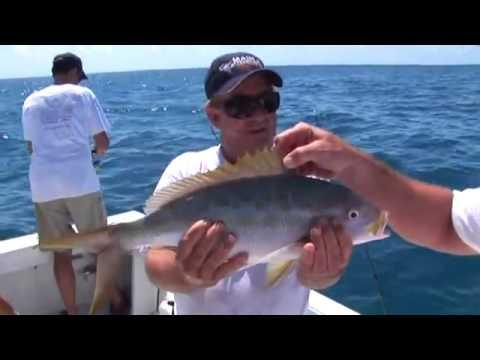 Gray Taxidermy Fishmounts, Fish replicas